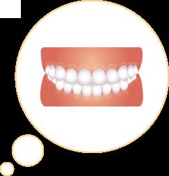 綺麗な歯並びのイラスト
